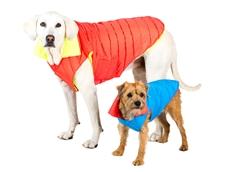 Coat | Sport Puffer Coats