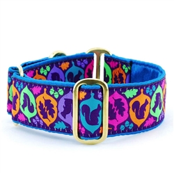 Squirrel! Teal Satin Lined Collars