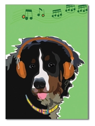 Birthday:  Bernese Mountain Dog