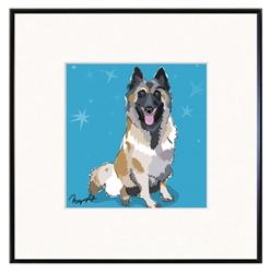 Framed Print: Belgian Shepherd