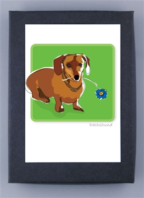 Dachshund - Grrreen Box Notes