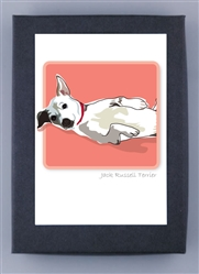 Jack Russell Terrier - Grrreen Box Notes