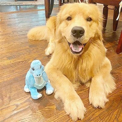 Tender-Tuffs Dino - Baby Blue Dino