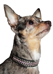 Pink Winston Collars & Leads by Hip Doggie