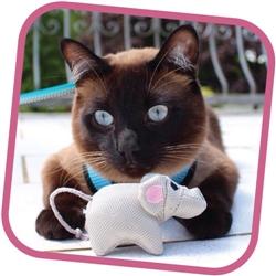 Beco Family Plush Cat Toys