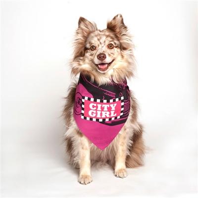 City Girl Pink Dog Bandana by Dog Fashion Living