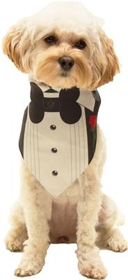 Tuxedo With a Rose Dog Bandana by Dog Fashion Living