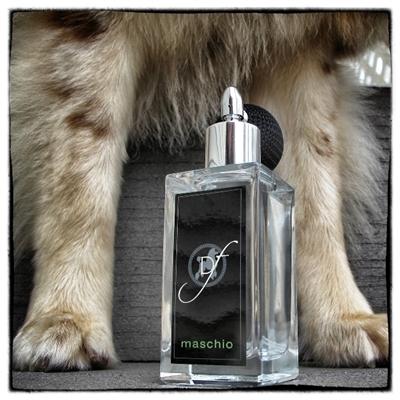 Male Dog Perfume Gift by Dog Fashion Spa