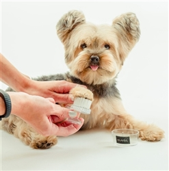 Paw and Face Brush by Dog Fashion Spa