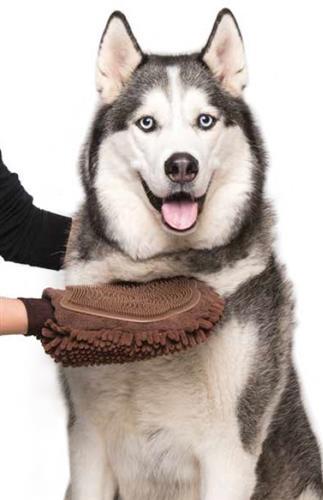 Dirty Dog Grooming Mitt