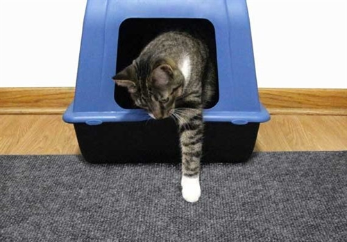 Premium Cat Litter Trapping Mat