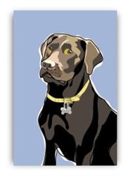 Labradore, Chocolate - Fridge Magnet