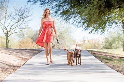 Wigzi Dual Doggie Retractable Leash