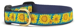 Bright Sunflower Collars and Leashes by Up Country