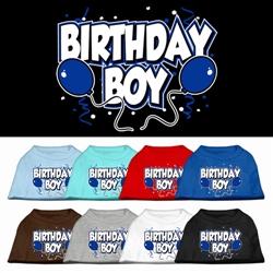 Birthday Boy Screen Print Shirts