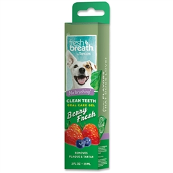 Fresh Breath Clean Teeth Oral Care Gel Berry Fresh - 2oz
