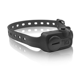 iQ No Bark Collar - Black