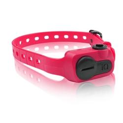 iQ No Bark Collar - Pink