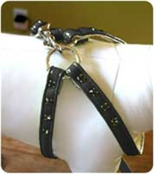 Black Step-In Harness