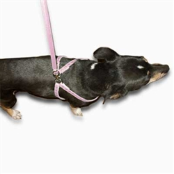 Tickled Pink Step-In Harness
