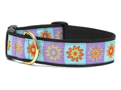 Lola Dog Collar Collection