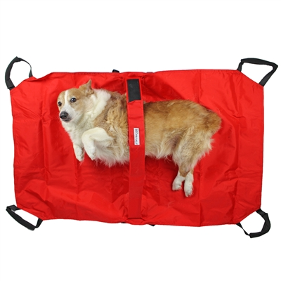 Pet Transport Stretcher for Dogs