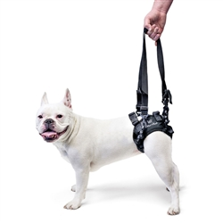 Walkin' Lift Rear Dog Harness