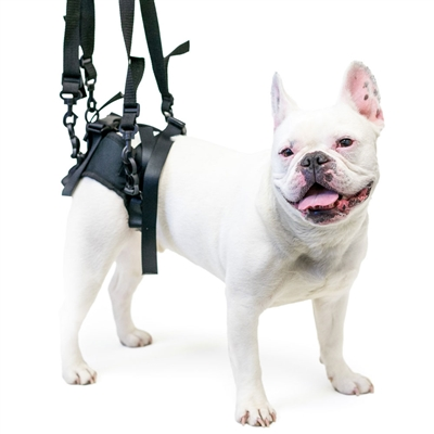 Walkin' Lift Rear Dog Harness