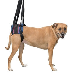 Walkin' Lift Combo Harness Rear