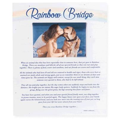 """Rainbow Bridge Wood Pallet Box Frames 11.5"""" x 9.5"""""""