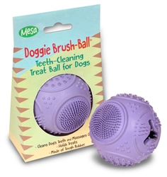 Doggie Tooth Brush Ball