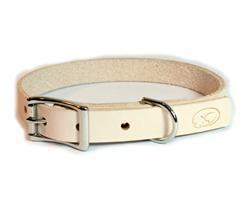 Small Dog Thick Leather Collar