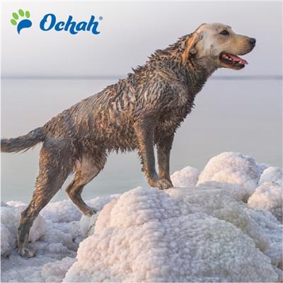 REPLENISH - Mineral Mud Scrub with Natural Moroccan Argan Oil, Lavender Oil, Dead Sea Minerals, Aloe Vera & Vitamin E - 400g Retail Pouches