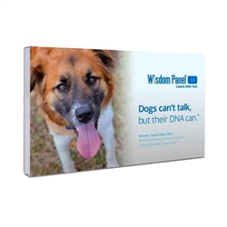 Wisdom Panel 3.0 DNA Test Kit
