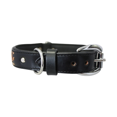 El Paso Dog Collars