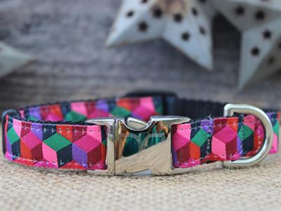 Block Party Dark Collar Silver Metal Buckles