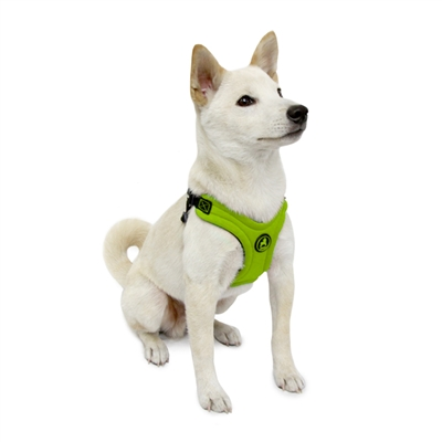 Escape FreeⓇ Sport Harness