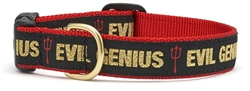 Evil Genius Collars and Leashes by Up Country