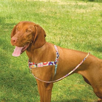 Chic Easy Walk® Harness