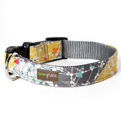 'Albert'  Collars & Leashes