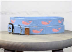 Whale Embroidered Dog Collar - Carolina Blue