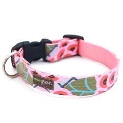 'Zinnia' Laminated Cotton Dog Collars & Leashes