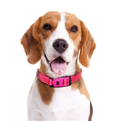 "ThunderCollar ""NO-PINCH"" Collar w/ FREE ThunderCover"