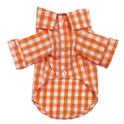Plaid Button Down Shirt in Orange