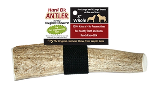 "8"" Whole - Wapiti Labs Elk Antler Chews"