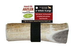 "8"" XL Whole - Wapiti Labs Elk Antler Chews"