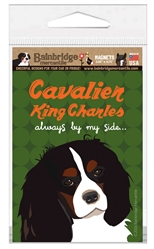 Cavalier King Charles - Always By My Side Magnet