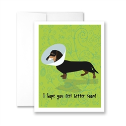 Hope You Feel Better Soon (Dachshund with cone) Greeting Card - Pack of 6 cards.