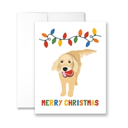 Merry Christmas Golden (blank) Greeting Card - Pack of 6 cards.