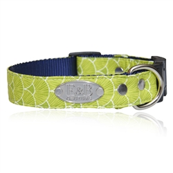 Tally Dog Collars & Leads